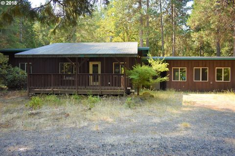 91950 Mill Creek Rd, Blue River, OR 97413