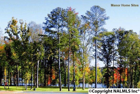 15 Chicory Brook Pass, Gadsden, AL 35901
