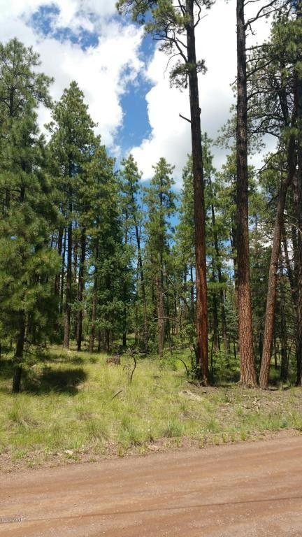 13 County Road 2067, Alpine, AZ 85920