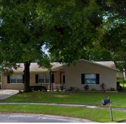 6205 Palmview Ct, Tampa, FL 33625