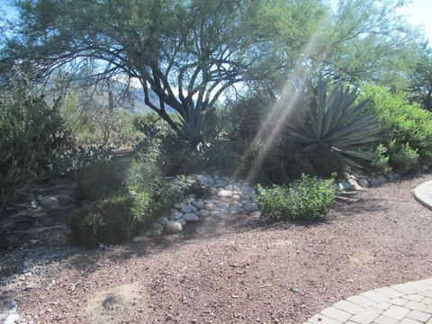 Photo of Tucson, AZ 85718