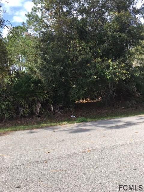 20 Pickcane Ln, Palm Coast, FL 32164