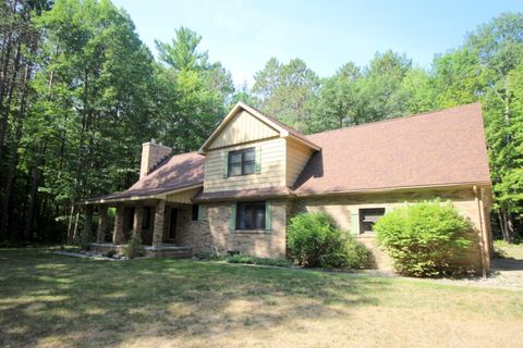 410 E Indian Woods Trl, Indian River, MI 49749