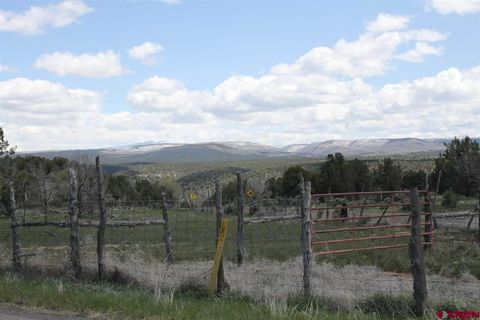 redvale singles Agricultural land in redvale, co 80 ± acres of agricultural land (parcel 4267-352-00-056-r2499) on 3760 road in redvale the terrain is rolling with wooded and mountain views the terrain is rolling with wooded and mountain views.