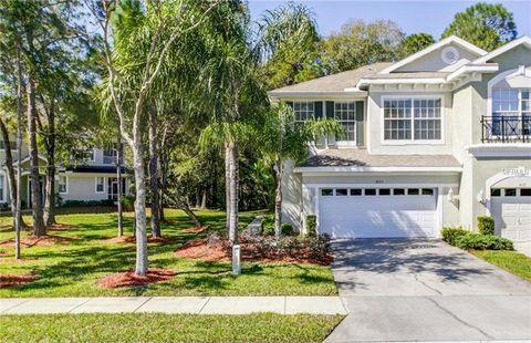 14153 Waterville Cir, Tampa, FL 33626