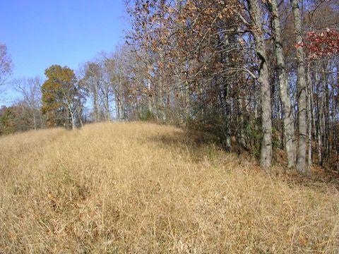 Photo of Grass Run Rd, Normantown, WV 25267
