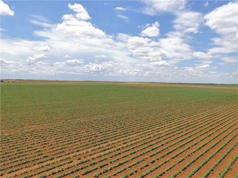 Photo of Fm 2534, Goree, TX 76363
