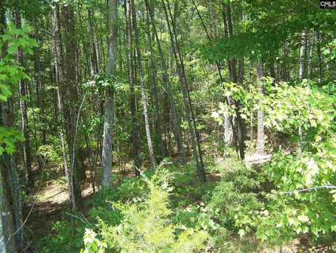 Photo of E Int S-20-130 And S-20-32 1370 Ft, Blackstock, SC 29015