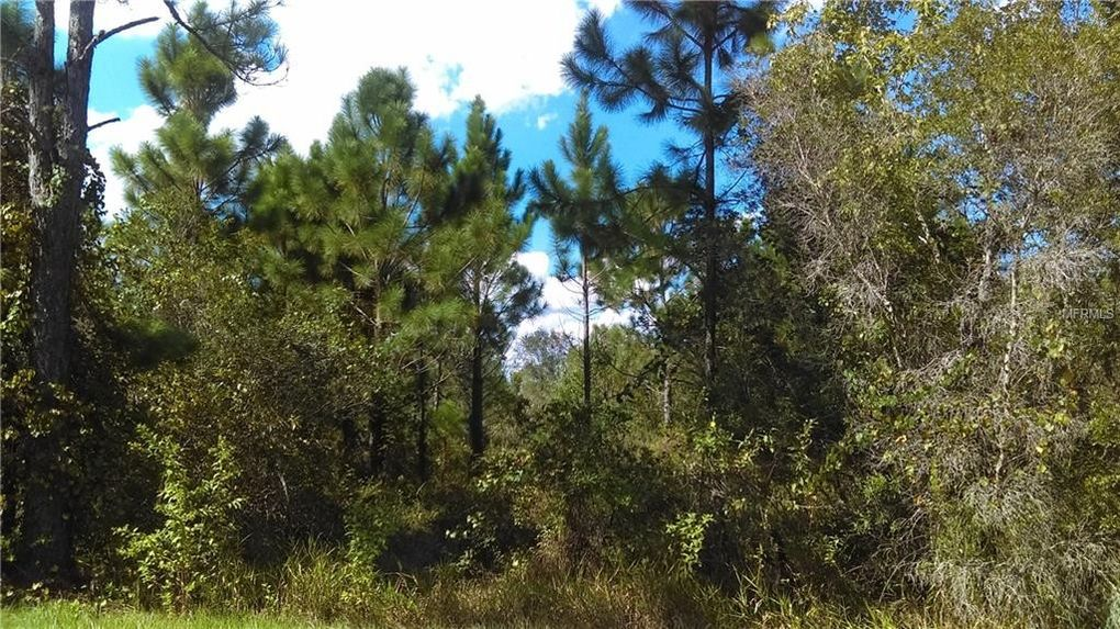 Homes With Land For Sale Clermont Fl