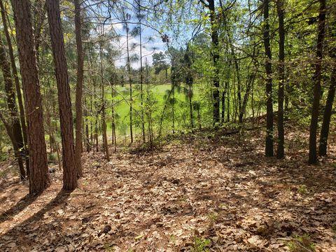 Photo of 219 Juniper Creek Blvd, Pinehurst, NC 28374