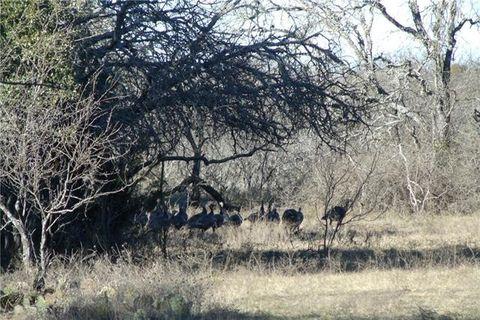 170 County Road 199, Mullin, TX 76864