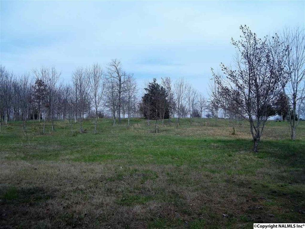 Wyeth Mountain Rd, Guntersville, AL 35976
