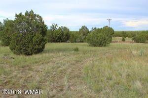 Bourdon Ranch Rd, White Mountain Lake, AZ 85912