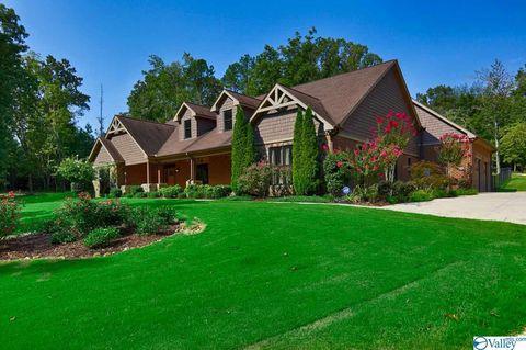 Astonishing Madison County Al Real Estate Homes For Sale Realtor Com Download Free Architecture Designs Ferenbritishbridgeorg