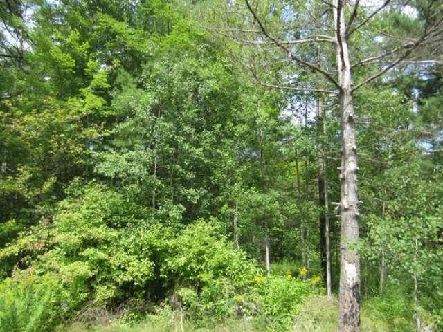 38 birchwood lane glennie mi 48624 land for sale and real estate listing