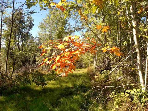 Photo of On Long Lake Rd, Mellen, WI 54546