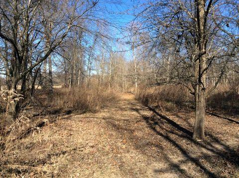 N County Road 800 N, Bluford, IL 62814