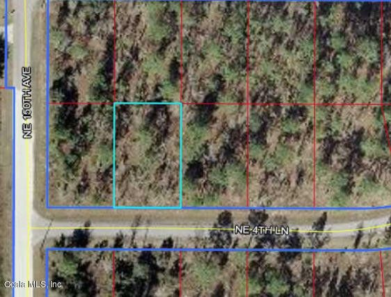 Ne 4 Ln Williston FL 32696 Land For Sale and Real Estate