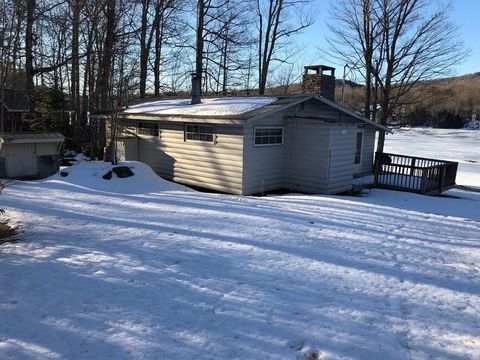 976 Goodnow Flow Rd, Newcomb, NY 12852
