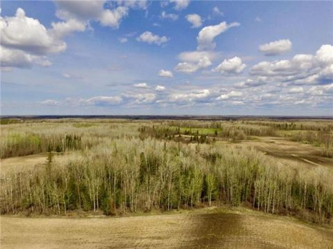 County Road 1, Northome, MN 56661
