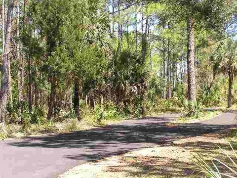 crawfordville hindu singles Search all tallahassee florida area real estate for sale on one easy-to-use site including homes, condos, townhomes, land, and foreclosure properties for sale in tallahassee, crawfordville.