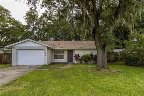6830 Oakdale Dr, Tampa, FL 33610