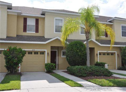 4559 Amberly Oaks Ct, Tampa, FL 33614