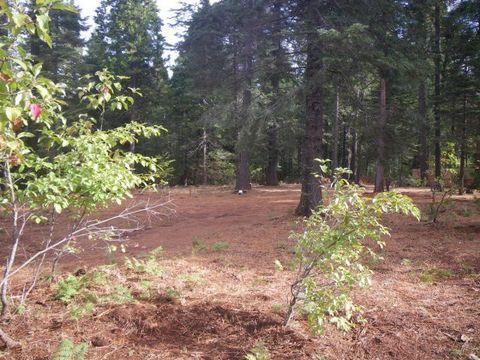 Photo of 18607 Little Round Mtn, Round Mountain, CA 96084