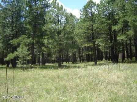 1220 Little Pine Trl Lot 355, Forest Lakes, AZ 85931