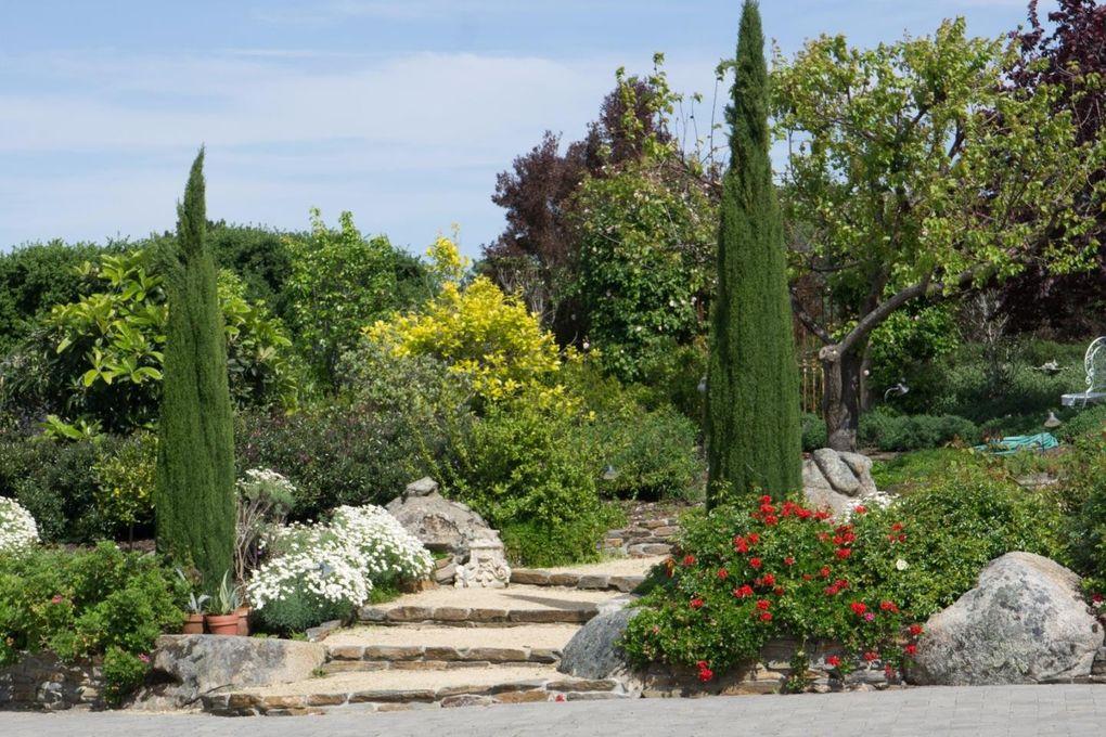 Rental Properties Monterey Ca