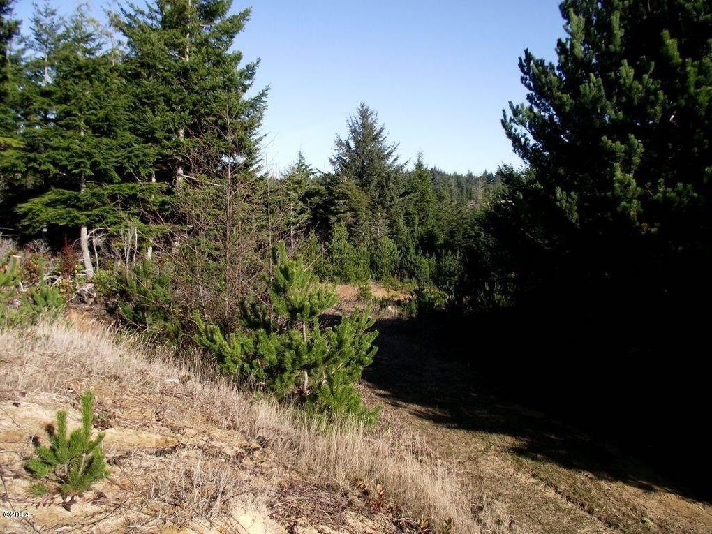 tl pacific coast hwy 500 waldport or 97394 land for