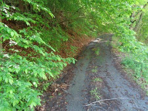 5202 Old Lesters Fork Rd, Grundy, VA 24614