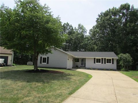 1104 Fanwood Ct, Painesville, OH 44077