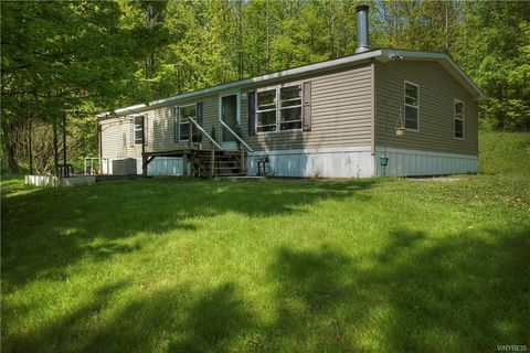 9118 Potter Hill Rd, Cattaraugus, NY 14719