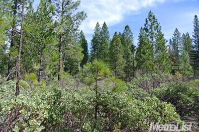16-17 Todd Valley Rd Foresthill, CA 95631