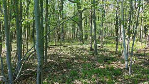 Photo of Sloping Meadow Rd Lot 11, Marshfield, WI 54449