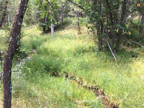 County Road A-007, Mora, NM 87732