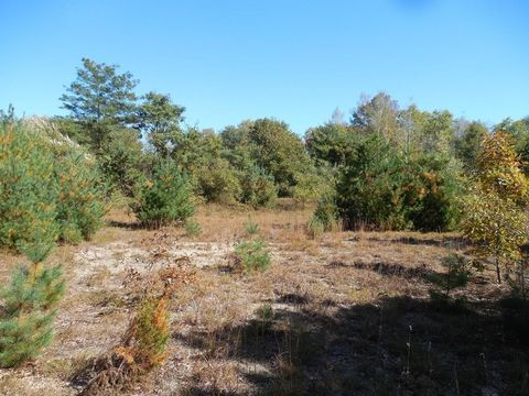 1 St Lot Howard Hopedale MA 01747