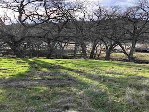 Photo of 6780 Dream Valley Rd, Red Bluff, CA 96080
