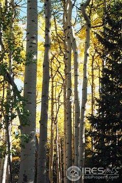 Photo of 8492 Martin Ln, Conifer, CO 80433