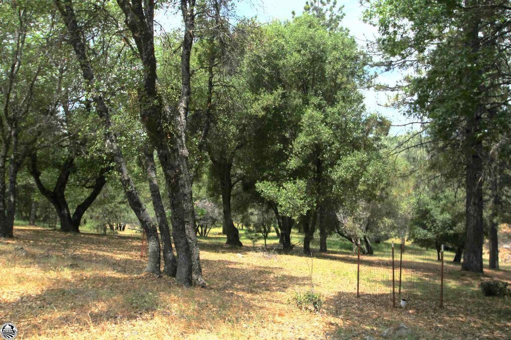 Hillcroft Dr Groveland, CA 95321