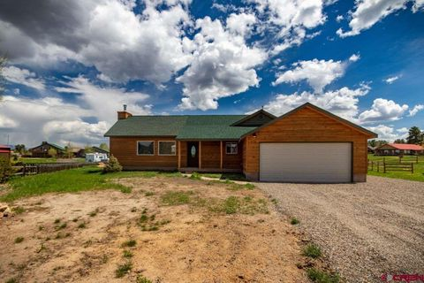 Pagosa Springs Co Real Estate Pagosa Springs Homes For