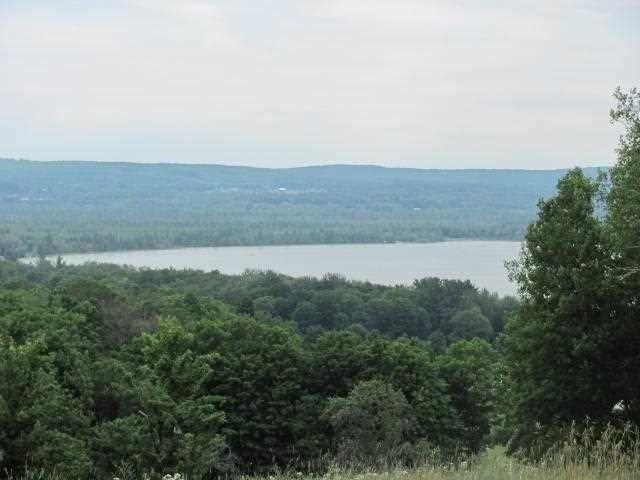 Property For Sale Deer Lake Boyne Mi