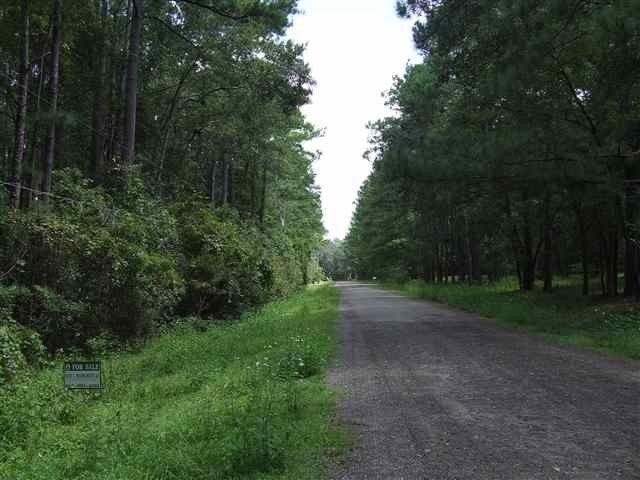 Woodland Dr Monticello, FL 32344
