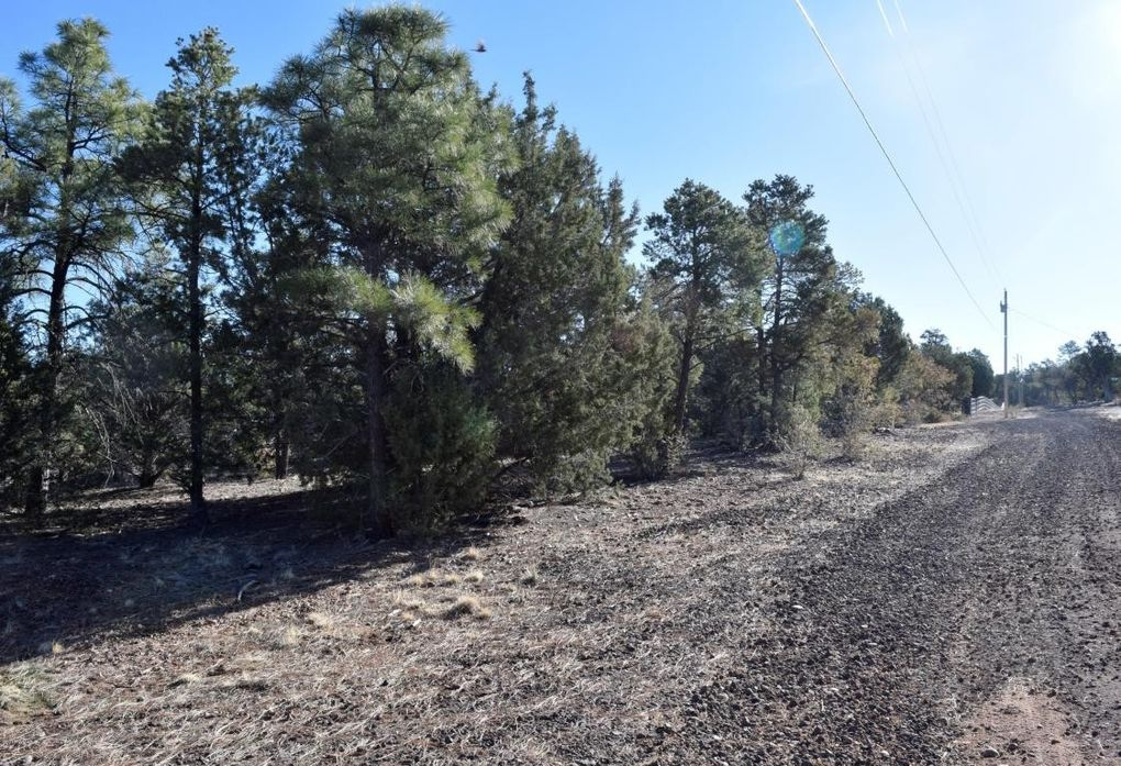 1853 Woolford Rd, Pinedale, AZ 85934