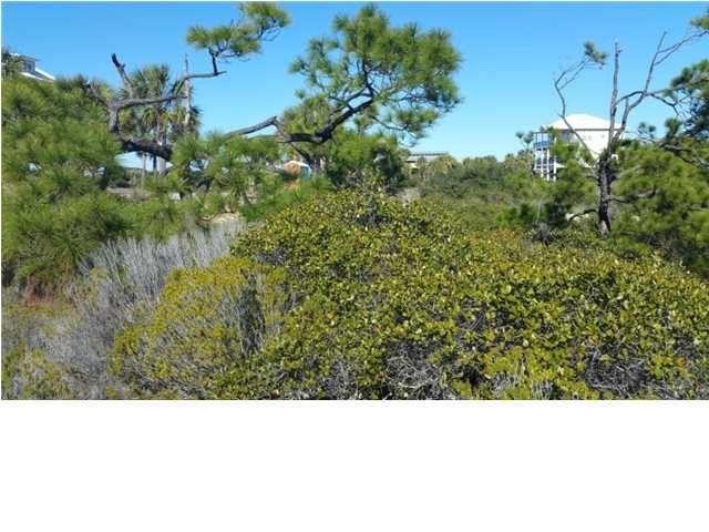 115 Gulf Hibiscus Dr Cape San Blas Fl 32456