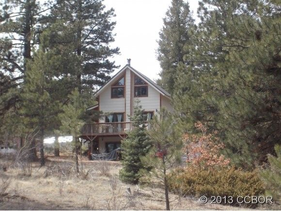 853 basin dr cotopaxi co 81223 home for sale and real