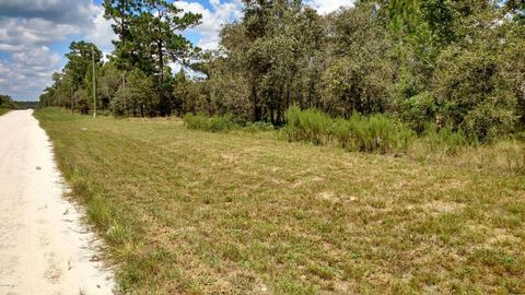 Se 131st Ave, Morriston, FL 32668