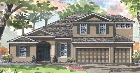22002 Butterfly Kiss Dr, Land O Lakes, FL 34637