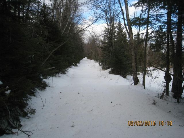 Pinnacle newark vt 05871 land for sale and real estate listing